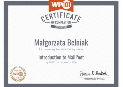 Wordpress-101-mailpoet