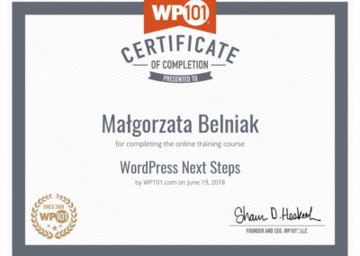 Wordpress-101-next-steps