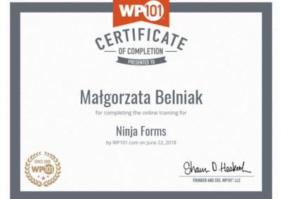 Wordpress-101-ninjaforms