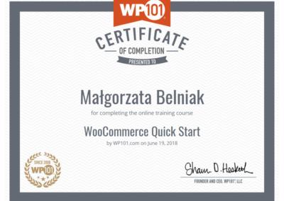 Wordpress-101-woocommerce